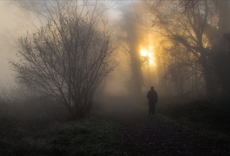 Alla ricerca della luce  di Turibol