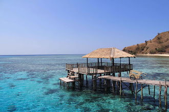 Photo: The other highlight of Flores is the untouched islands that offer tranquility as this. The corals are fantastic, where living school of fish and colorful creatures make it a safe home.