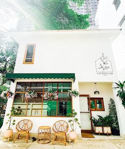 Cafe / Bar - Caterpillar cafe