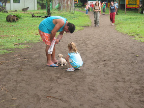 Photo: Playing with a puppy at Tortuguero