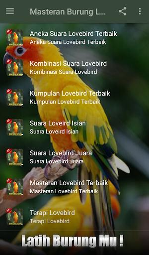 2020 Masteran Suara Burung Lovebird Ngekek Juara App Download For Pc Android Latest