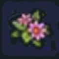ももいろの花