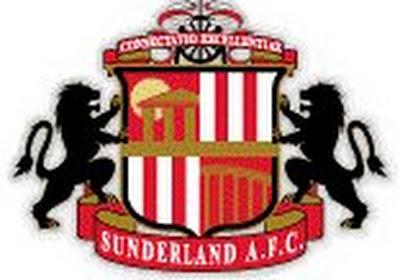 Djibril Cissé offre la victoire à Sunderland