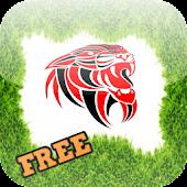 Fun Lion Games For Kids Free