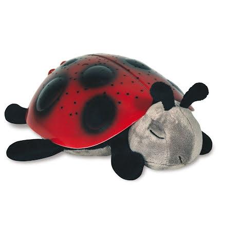 Twilight Ladybug, Red
