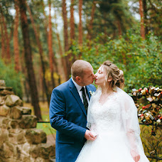 Wedding photographer Sergey Lisica (graywildfox). Photo of 04.12.2017