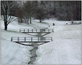 Photo: 26. januar 2011 - Gensyn
