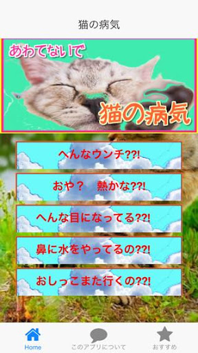 消滅螞蟻的硼酸糖漿(滅蟻群良方) @ 蜂蜜大王 :: 隨意窩 Xuite日誌