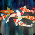 Koi Fish Pack 3 Live Wallpaper icon