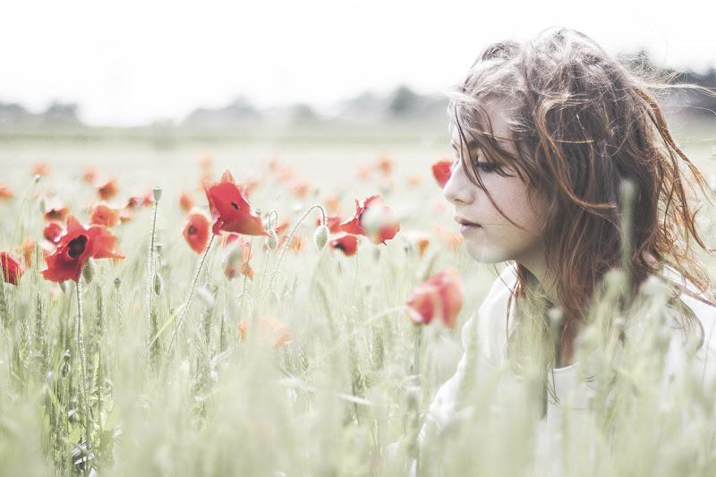 Poppies' paradise di alexcaso91