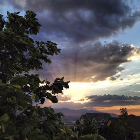 #sunset by Jace LeRoy - Instagram & Mobile Instagram