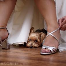 Wedding photographer Irina Dascalu (irinadascalu). Photo of 28.12.2017
