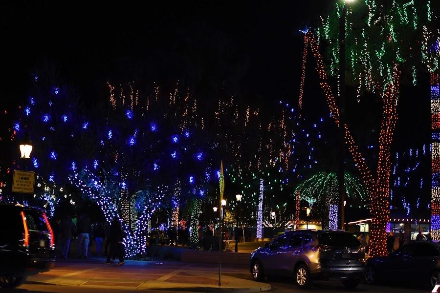 Glendale Glitters AZ by Maria Epperhart - Public Holidays Christmas ( joy, holiday, christmas, people, lights )