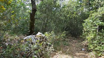 terrain à Néoules (83)
