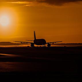 Airplane in Sunset by M. Andersen - Transportation Airplanes ( danmark, kastrup lufthavn, photo-andersen.dk, cph, denmark, københavn,  )