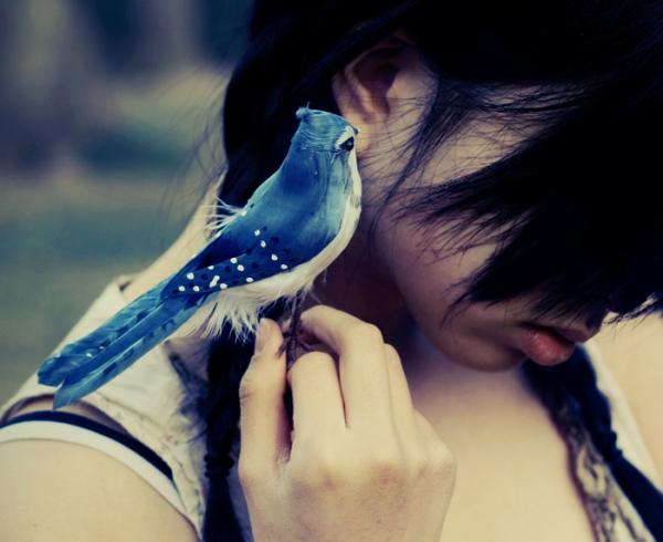 Um passarinho me contou