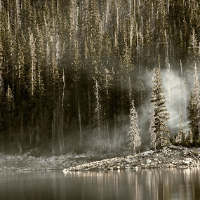 smoke on the water by Brent Flamm - Landscapes Forests ( b&w, nature, utah, camping, uintas, landscape )