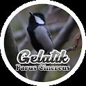 Parus Cinereus icon