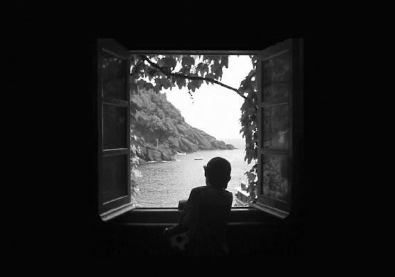 Il cuore oltre la finestra di Petermatteo