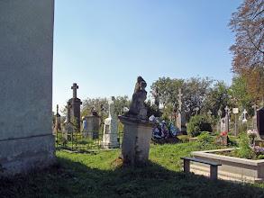 Photo: Rozdół - stary cmentarz.   Fot. Stanisław Burlikowski.