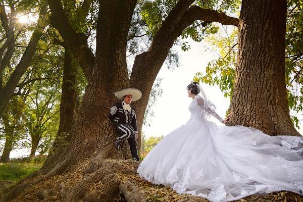 Fotógrafo de bodas Alma Romero (almaromero). Foto del 19.12.2017