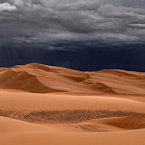 Imperial Sand Dunes Storm by Stephen Botel - Landscapes Deserts ( clouds, dunes, desert, thunderstorm, imperial sand dunes, california, storm, glamis )