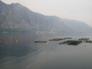 Photo: 99272126 Czarnogora - zatoka Kotor