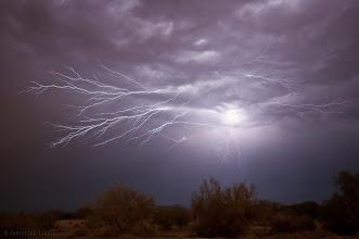 Photo: Electrified!