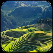 Vietnam Wallpapers