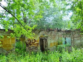 Photo: The jungle takes back what it can - Facility at Szarvaskő - Az őserdő lassan visszaveszi, amit tud