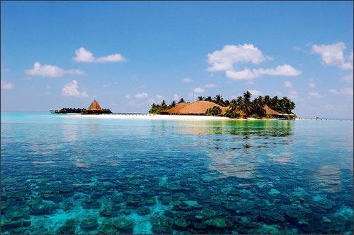 Mạch đá ngầm ở Maldives