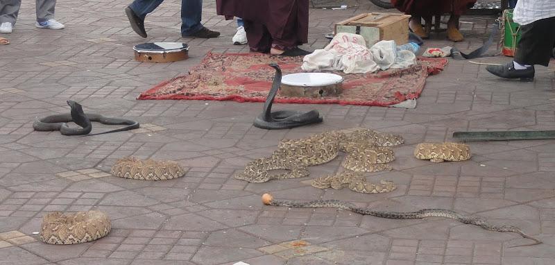 Passeando por Marrocos... - Página 5 DSC08189b
