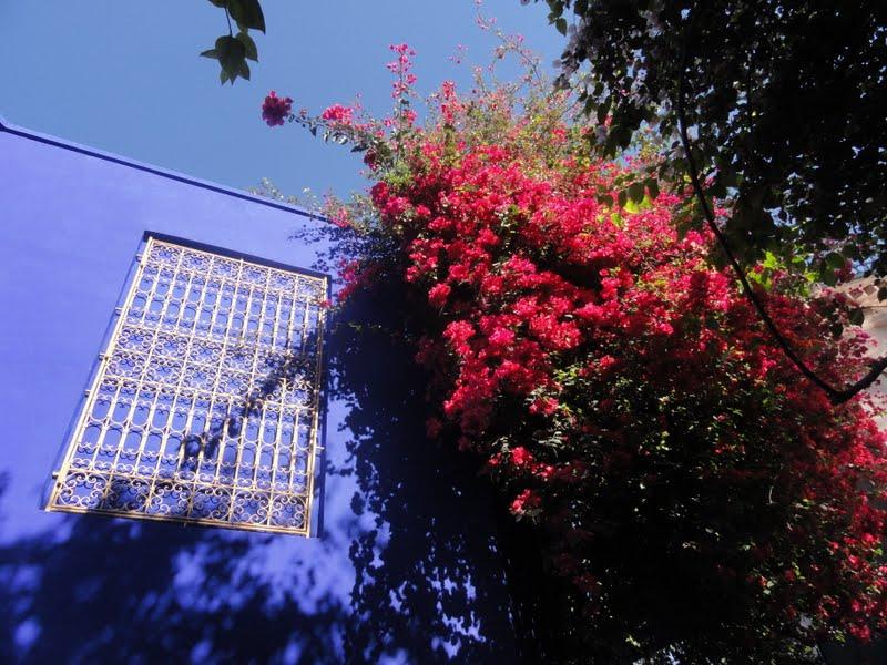Passeando por Marrocos... - Página 5 DSC08427