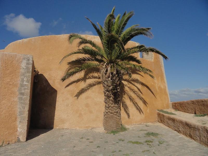 marrocos - Passeando por Marrocos... - Página 6 DSC09051
