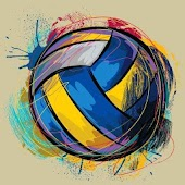 volleyball 3d 2017