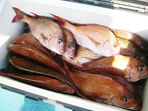 Photo: タカオさんもなんだかんだでよく釣ってます!