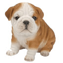 Dogs and Puppies HD Wallpapers  New Tab Theme