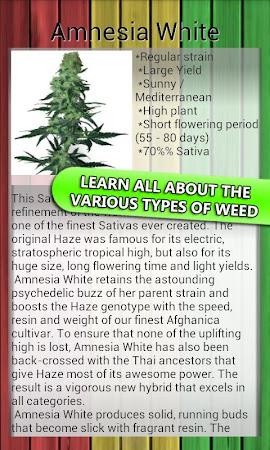 MyWeed - Grow and Smoke Weed 3.4 screenshot 642317