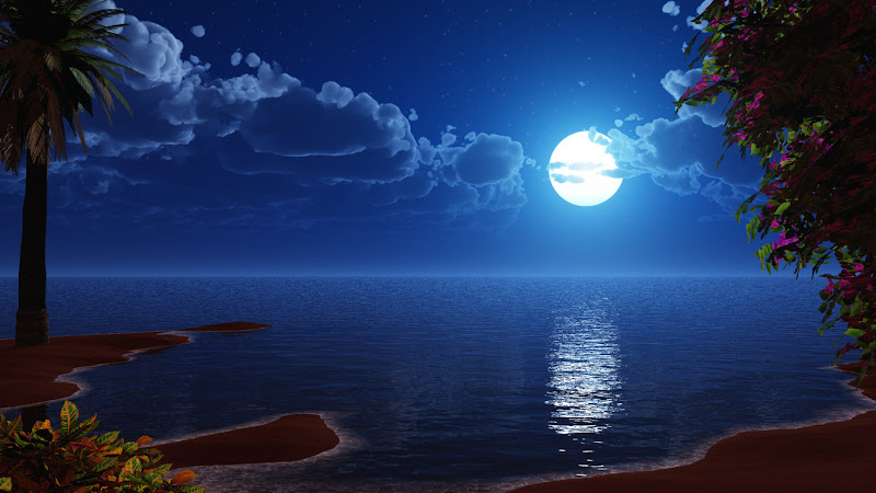 10 Moonlit Nights Wallpaper Collection For Your Desktop
