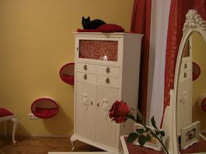Photo: endlich wieder eine Aussichtsplattform, gibt hier ja kaum welche........ (Schlafzimmer)
