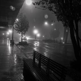 Wet Saturday Night by Jan Crawford - Black & White Street & Candid ( black and white, fog, toowoomba, night, street scene,  )