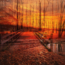 Sunset Curtain by Millieanne T - Digital Art Abstract