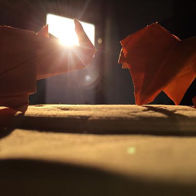 Origami di nickfor