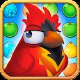 Bravo Birds - SOA Games