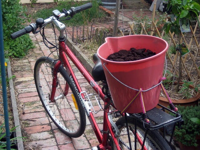Collecting coffee grounds on a bike open bucket