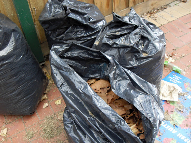 bag of leaves for compost and leafmould