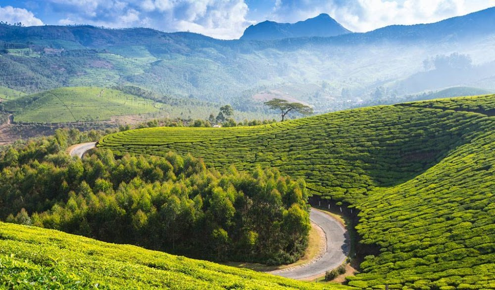 coonoor-places-to-visit-in-south-india_image