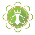 Black Soldier Fly Cultivation icon