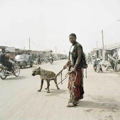 atau kucing mungkin merupakan binatang peliharaan paling terkenal di negeri kita Indonesia Gila bener, inilah binatang peliharaannya orang Afrika