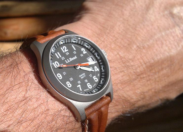Timex t42351 watch user